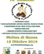 strada-olio-monti-pisani-festa-castagna-2016-preview